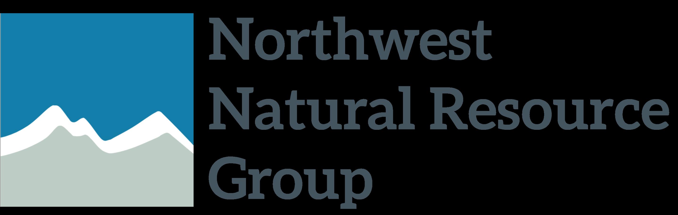 NNRG-Logo